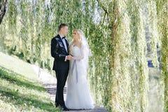 Sessão fotográfica do casamento fora Foto de Stock