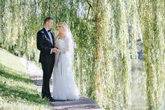 Sessão fotográfica do casamento fora Foto de Stock Royalty Free
