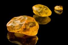 Sessanta milione anni dell'ambra baltica Immagini Stock