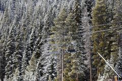 Sesselbahn unter Bäumen am Skiort stockfotografie