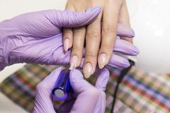 Session of the manicure in the beauty salon. Stock Images