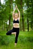 Sessione di yoga della natura in legno Immagine Stock
