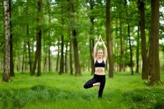 Sessione di yoga della natura in legno Immagini Stock Libere da Diritti