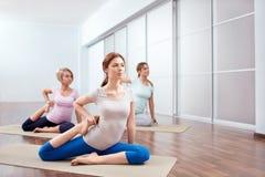Sessioni di yoga del gruppo Immagine Stock Libera da Diritti