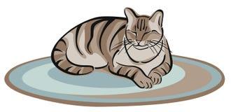 Sesta do gato Fotos de Stock Royalty Free
