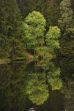 sestausee för miljö s Arkivbilder