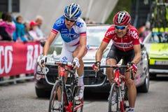 Sestriere, Italia 30 de mayo de 2015; El grupo de ciclistas profesionales aborda la subida pasada antes de arriva Fotografía de archivo libre de regalías