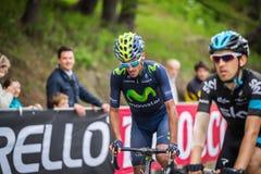 Sestriere, Italia 30 de mayo de 2015; El grupo de ciclistas profesionales aborda la subida pasada antes de arriva Imagen de archivo libre de regalías