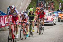 Sestriere, Italia 30 de mayo de 2015; El grupo de ciclistas profesionales aborda la subida pasada antes de arriva Fotos de archivo