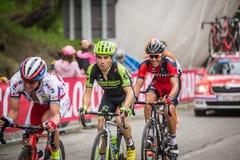 Sestriere, Italia 30 de mayo de 2015; El grupo de ciclistas profesionales aborda la subida pasada antes de arriva Fotografía de archivo