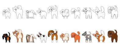 Set śmieszni mali psy pokazuje ich krupony ilustracji