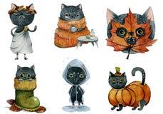 Set śliczna czarna jesień kotów akwarela royalty ilustracja