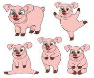Set śliczna kreskówki świnia na różnorodnych pozycjach ilustracji