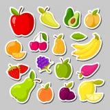 Set śliczne owoc w postaci majchery ilustracja wektor