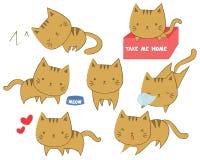 Set śliczni koty w różnorodnych pozycjach Fotografia Stock