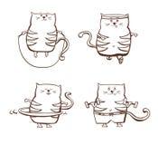 Set śliczni sprawność fizyczna koty royalty ilustracja