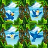 Set śliczny błękitny ptak w scenach royalty ilustracja