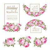 Set ślubna zaproszenie karta Róży elegancka karta Wiosna dekoracyjny bukiet Obraz Stock