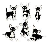 Set śmieszni psy ilustracja wektor