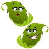 Set śmieszny roześmiany zielony drzewny liść odizolowywający na białym tle Wektorowa kreskówki zakończenia ilustracja ilustracja wektor