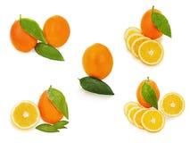 Set świeże dojrzałe pomarańczowe owoc z cięcia i zieleni liści isolat Zdjęcia Stock