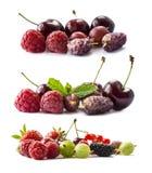 Set świeże owoc i jagody tła jagod owoc odizolowywali biel Dojrzali rodzynki, malinki, wiśnie, strawberri Obrazy Royalty Free