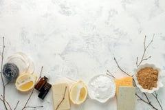 Set życzliwi naturalni czyści produkty, metalu muśnięcie, cytryna, wypiekowej sody sodium dwuwęglan, mydło, istotni oleje, łachma obraz stock
