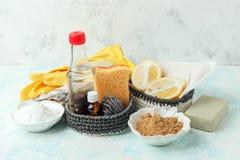 Set życzliwi naturalni czyści produkty, metalu muśnięcie, cytryna, wypiekowej sody sodium dwuwęglan, mydło, istotni oleje, łachma obrazy stock