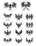 Set 14 av örnvingar Royaltyfri Fotografi