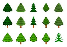 Set of 15 vector conifers Royalty Free Stock Image