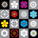 Set of 16 flowers Royalty Free Stock Images