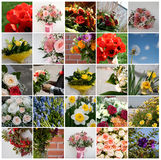 Set of 25 floral pictures Royalty Free Stock Image