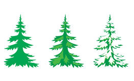 Set of 3 fir-trees - vector Stock Photo