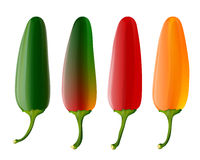Set of 4 jalapeno peppers Stock Images