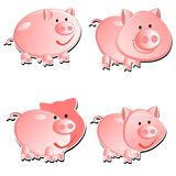 Set from 4 pigs Royalty Free Stock Image