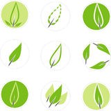 Set of 9 leaf graphics. Suitable for use in a logo. Vector is available Stock Photography