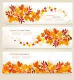 Set of abstract autumn banners with colorful leaves Stock Images