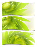 Set abstract background. With green petal Stock Image