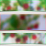 Set of abstract banners with blurry strawberries. Royalty Free Stock Image