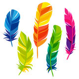 Set of abstract bright transparent feathers on Royalty Free Stock Photo