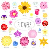Set of abstract flat flowers. Stock Photos