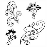 Set of abstract floral elements Royalty Free Stock Photography