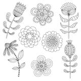 Set of abstract floral elements. Hand drawn doodle. Vector illustration Royalty Free Stock Images