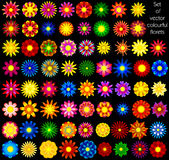 Set of  abstract florets. Set of colourful florets, template for designers Stock Images
