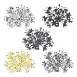 Set of abstract flowers isolated on white background. Hand drawn Stock Image