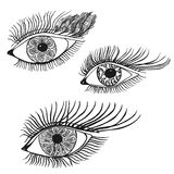 Set of the abstract hand drawn human eyes. Royalty Free Stock Photos