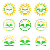 Set of abstract icon - sun and plant logo. Stock Photography