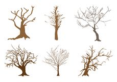 A Set of Abstract Isometric Brown Trees. An Illustration Collection Brown Color of Landscaping Symbols or Isometric Trees and Plants for Garden Decoration Royalty Free Stock Photo