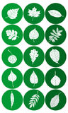 Set of Abstract Leaf Icons Royalty Free Stock Photo