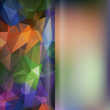 Set of abstract polygon triangles and blurred smooth vector back Stock Photos